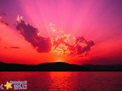 Rožinis dangus