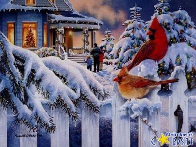Sniegenos
