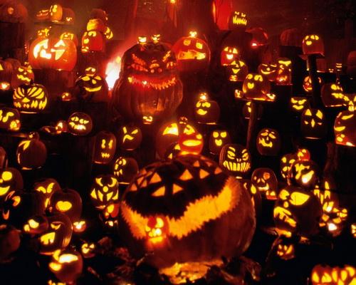 Throng of pumpkins
